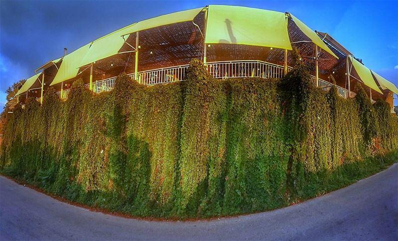 miraminpalacehotel beiteddine mountlebanon lebanon restaurant ... (Mir Amin Palace Hotel)