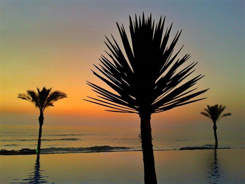 jannasurmer jannaresort damour beirut lebanon beach seaside pool ... (Janna Sur Mer)