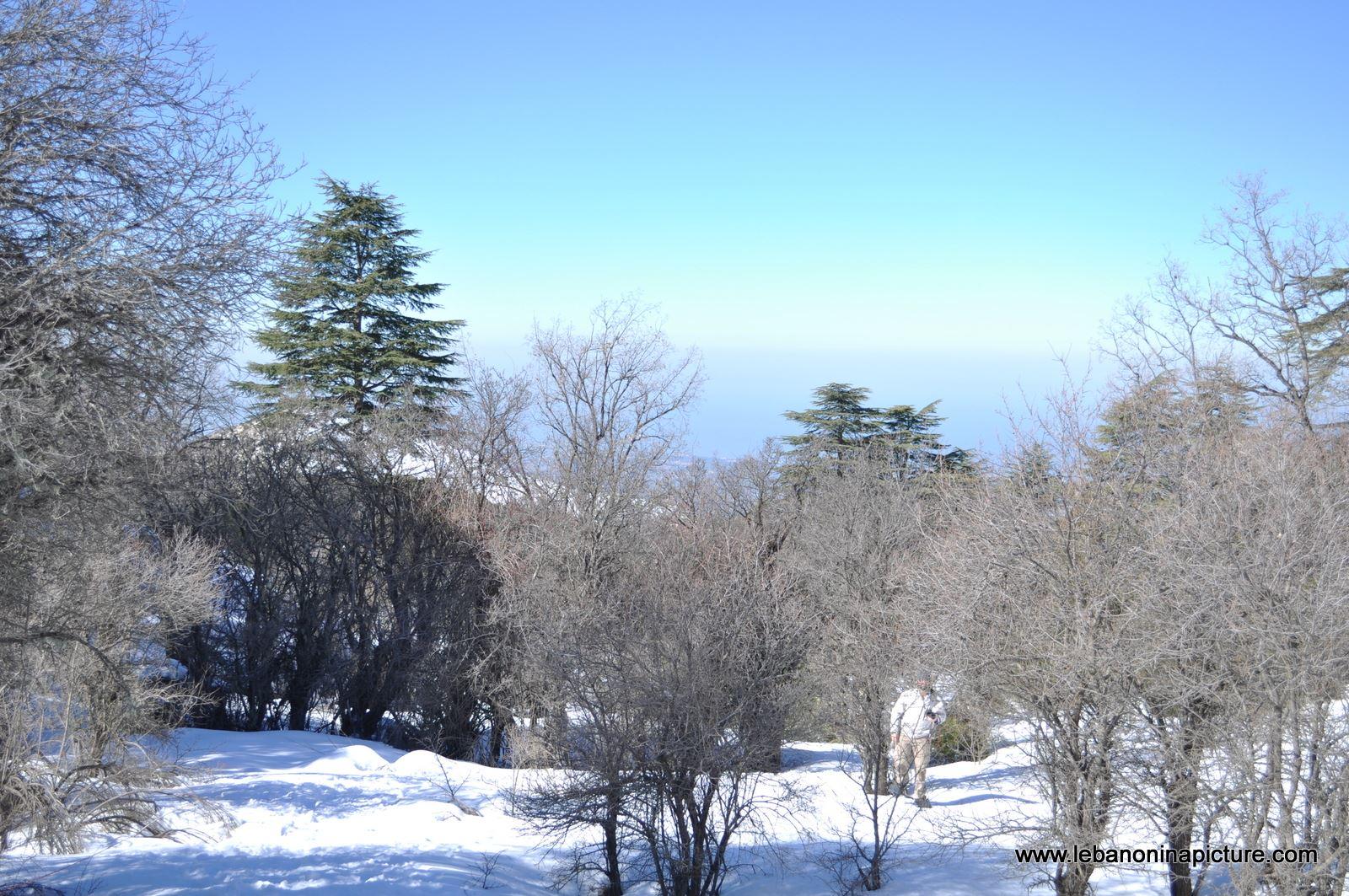 Snowshoeing Ehden Reserve (Horsh Ehden Winter 2012)
