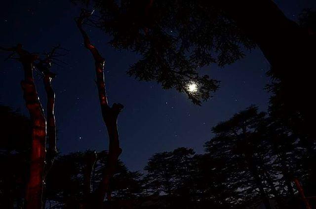 moon fullmoon moonlight stars night nightphotography dark sky ...