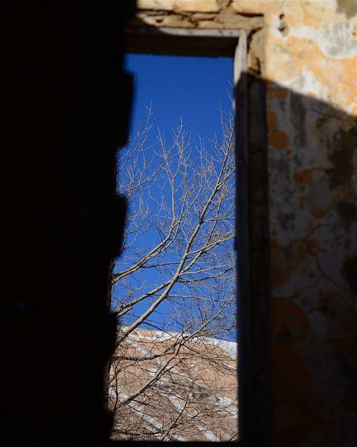 window old oldhouse bluesky tree winter ...