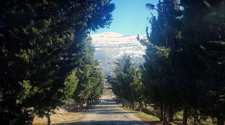 snow mountains road trees roamtheplanet blue sky green ... (Ehden, Lebanon)