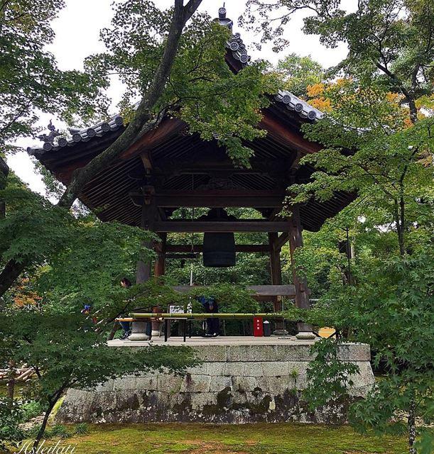 Forgive others,not because they deserve forgiveness ,but because u deserve... (Kinkaku-ji)