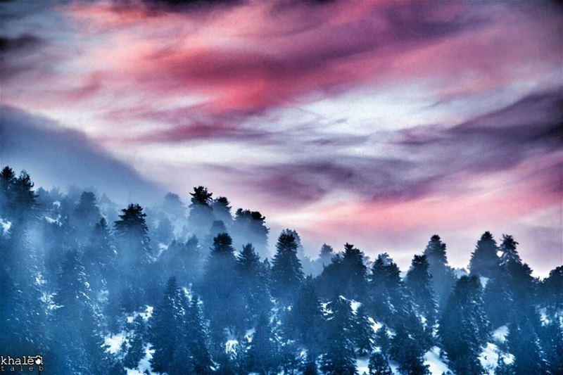 لوحةٌ فرّت من متاحف الفنّ الراقي لتستقر فوق أراضينا ♡ مشهدية النور والظلام