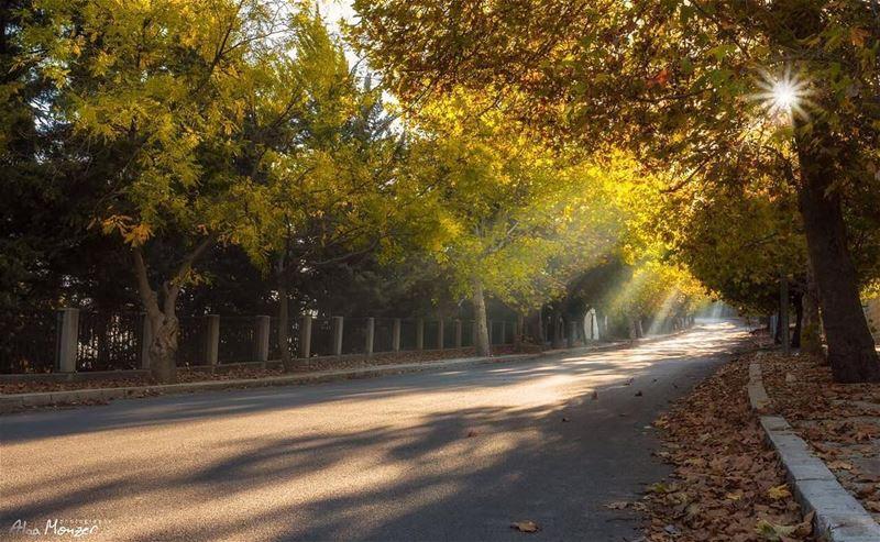 goodmorning 10452_lebanon 10452 🇱🇧 sunrise sun ray rays ... (Sawfar, Mont-Liban, Lebanon)