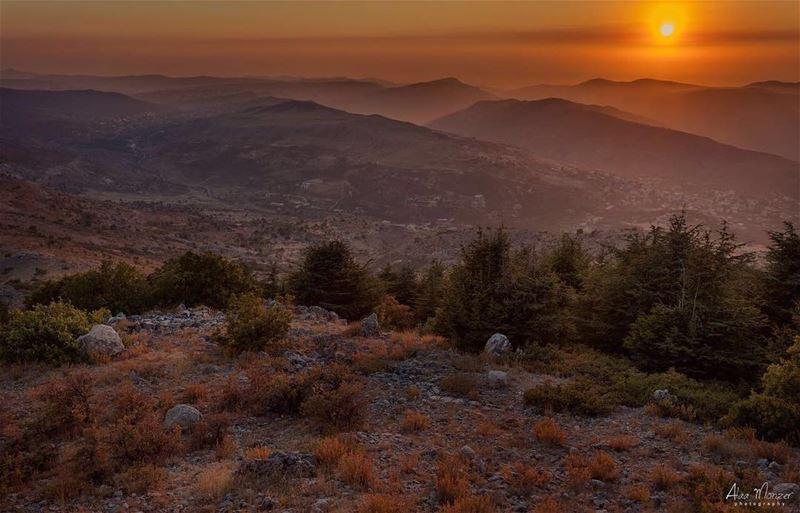goodnight from @shoufreserve liveloveainzhalta lebanon shouf ... (Aïn Zhalta, Mont-Liban, Lebanon)