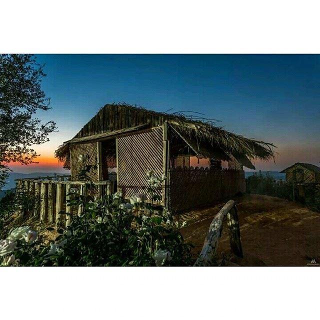 sunset mountlebanon jbaashouf colors tree photography canon ...