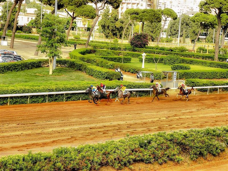 lebanon beirut vscocam beautifuldestinations dametraveler ... (Hippodrome Du Parc De Beyrouth)