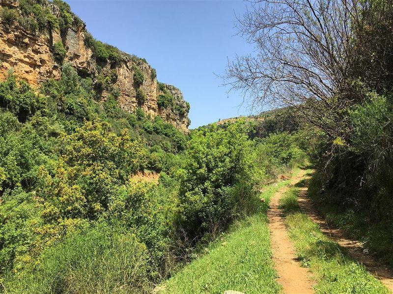 lebanon lebanese lebanon_hdr landscape ig ig_lebanon Jezzine ...