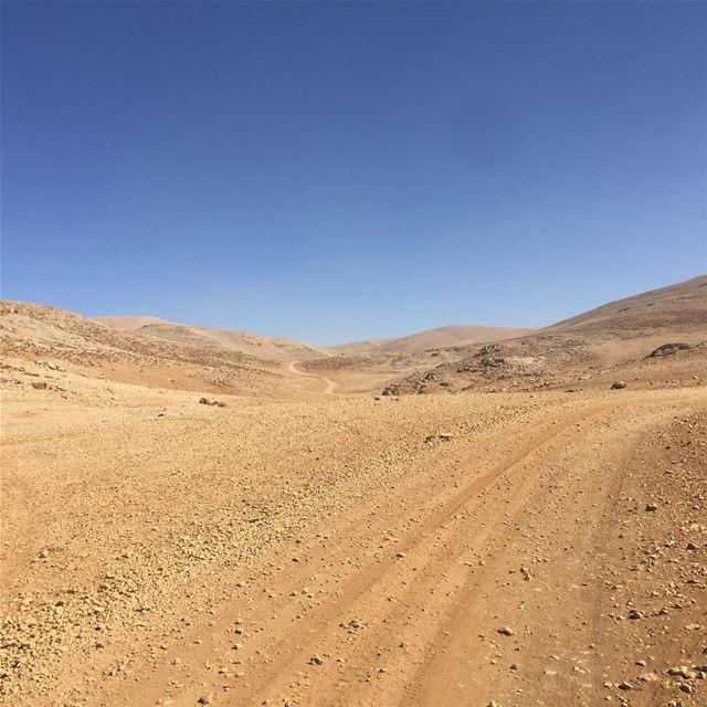 Its a loney walk to the... (Kornet El Sawda)