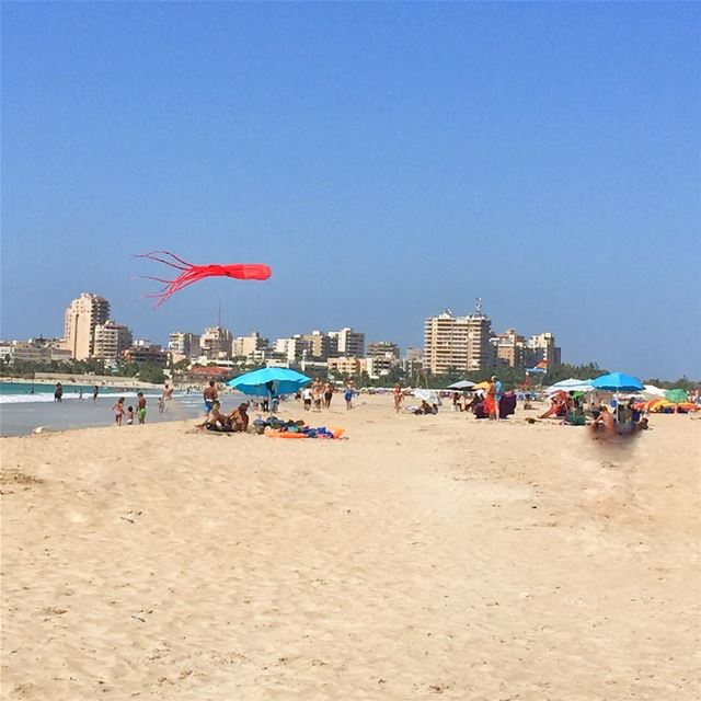 Its always kite time at ... (Tyre-Beach)