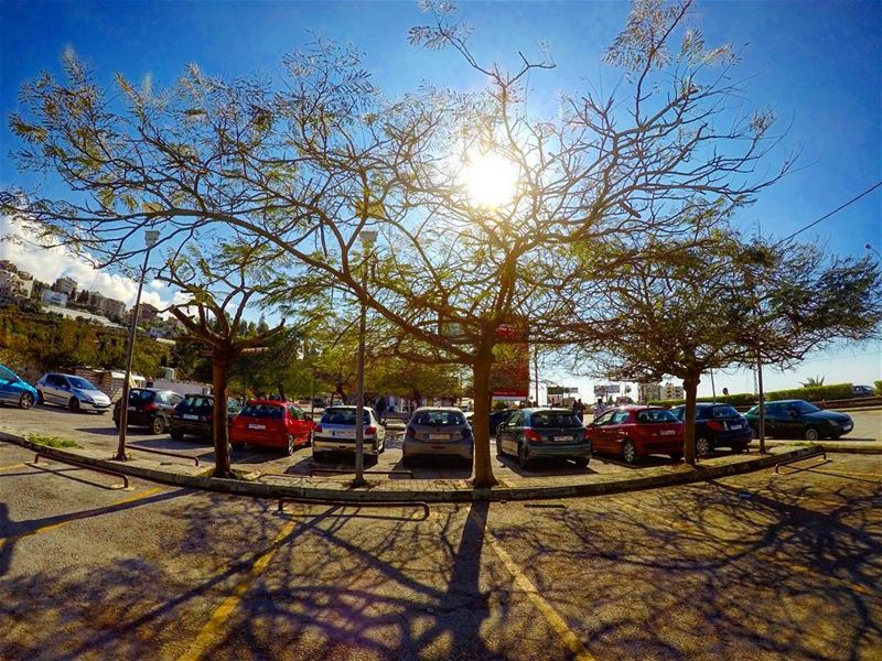 Current mood sunnyday sun sunrise tree treoflife sky bluesky ...