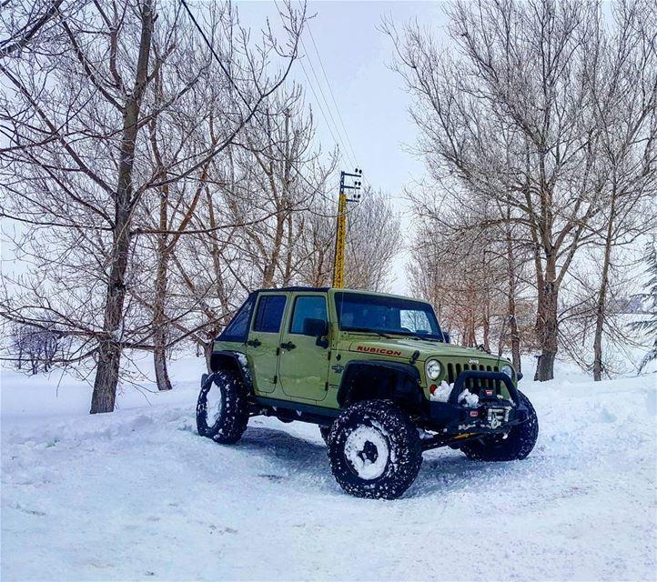 jeep wrangler jeepwrangler wranglers in_the_storm freezing...