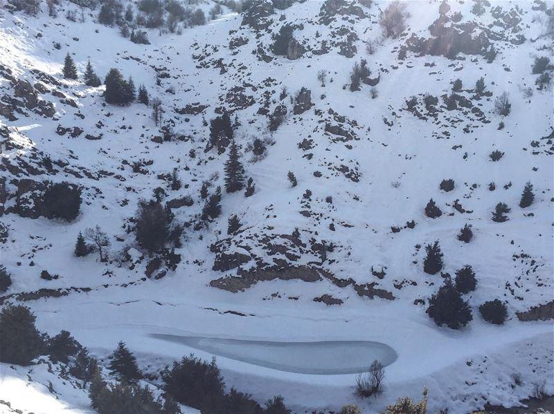 ❄️❄️..... frozen lake snow everywhere trees mountain view ... (Ehmej, Mont-Liban, Lebanon)