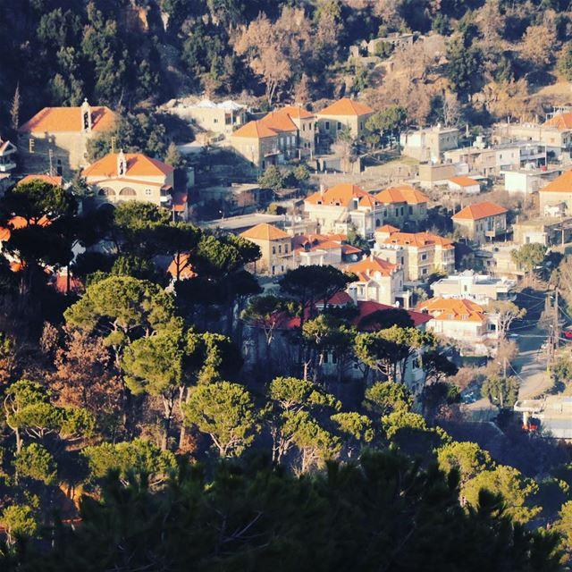 Living together Humans and nature ! Lebanon Liban bekfaya town green ... (Bekfaya)