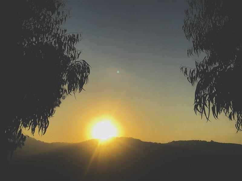 Lebanon nature sun sunset dusk mountain trees green leaf sky ...
