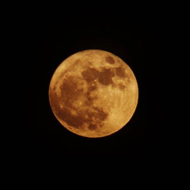 و كلٌ في فلكٍ يسبحون bigmoon moon moonology nature yellow fullmoon ...