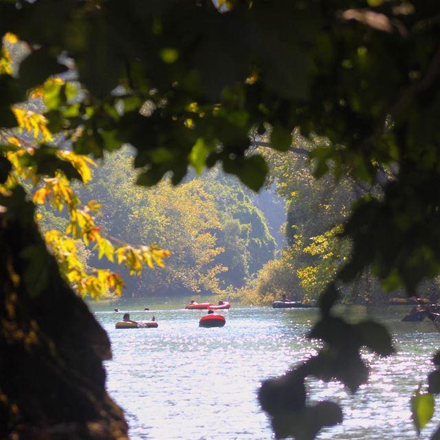 chouwen lake swimming nature lebanon lebanonspotlights ...