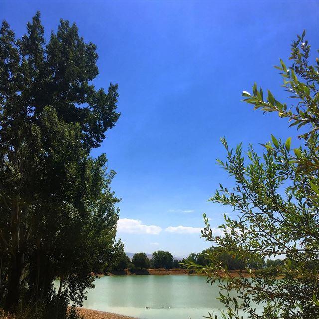 lebanon taanayel lake nature summer ... (Taanayel Lake)
