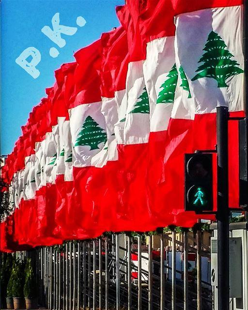عيد الاستقلال لبنان علم happy independence day lebanon lebanese...