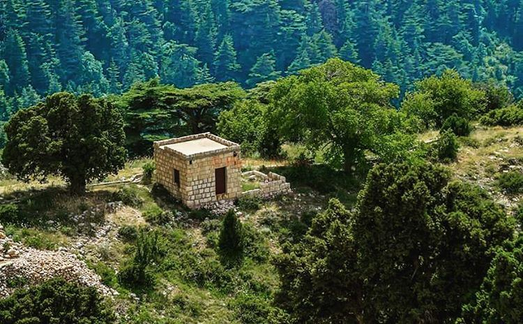 old traditional lebanese house ehden ceaders natural reserve ...