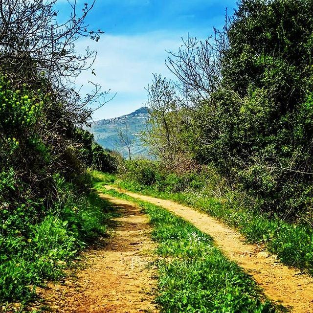 The weekend road green blue sky lebanon lebanon_hdr hd_lebanon ...