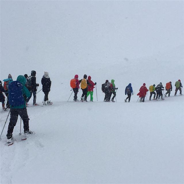 snowing snowshoeing unforgettable moments lovelyday amazingfeeling ... (Falougha, Mont-Liban, Lebanon)