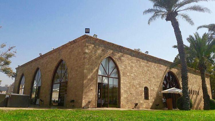 relaxing softy lovethisplace blue sky classyinteriors palmtrees ... (Rest House,Saida)