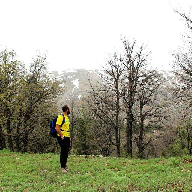 hiker springending hiking cedars reserve tannourine livelovebeirut ... (Tannourine, Liban-Nord, Lebanon)