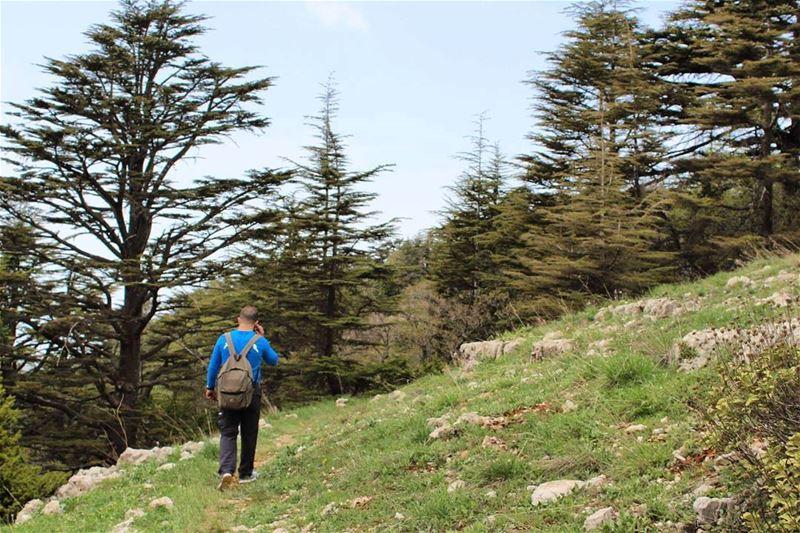 hiker naturelovers lebanonpassion ptk_lebanon livelovehike ...