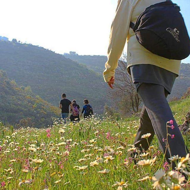 friendsofnature naturelovers naturephotography livelovesports hiking ...
