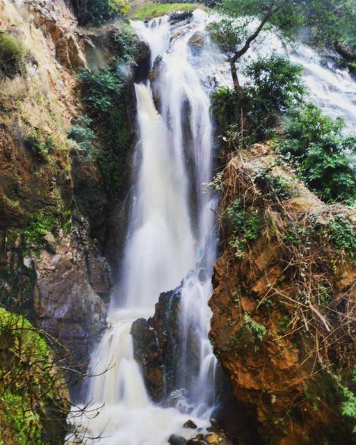 sunday roadtrip trip north lebanon water waterfall mud nature trees... (3youn el Samak)
