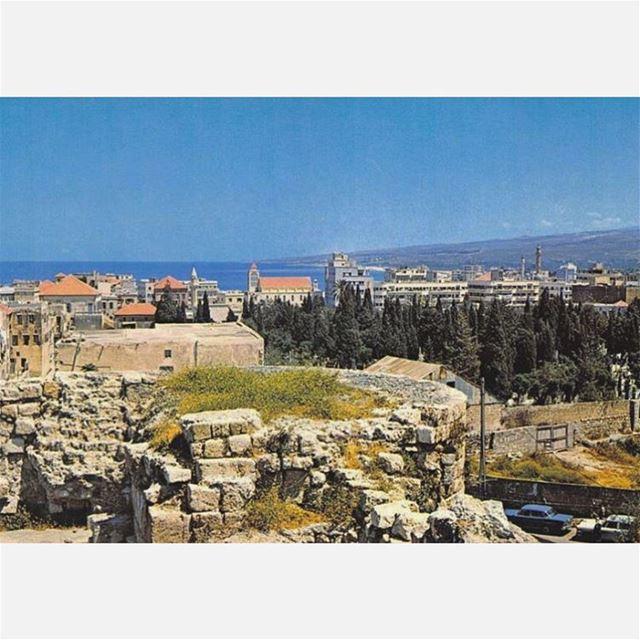 #صيدا من القلعة البرية عام ١٩٦٧