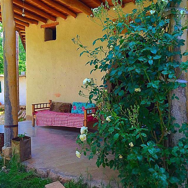 Mid summer day dream perfectspot lebanon bekaa sitwithme bench shade... (Beqaa Valley)
