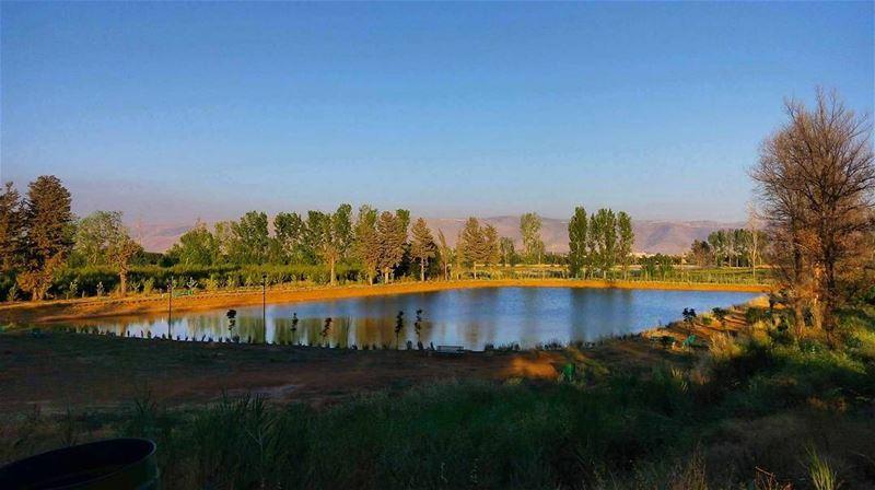 lebanon bekaa taanayel roadtrips lake reserve nature naturehippys ... (Deïr Taanâyel, Béqaa, Lebanon)