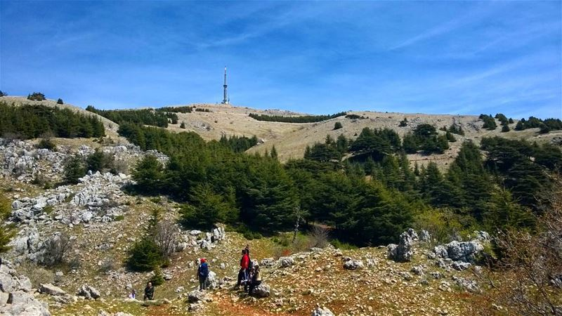 tb lebanon_hdr maaserelchouf cedars hiking hikinglebanon hikinglife... (Maaser El Shouf Cedars)