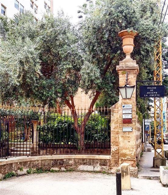 lebanon beirut beyrouth beyrouthlife ashrafieh eglisesaintjoseph ... (Eglise Saint-Joseph)