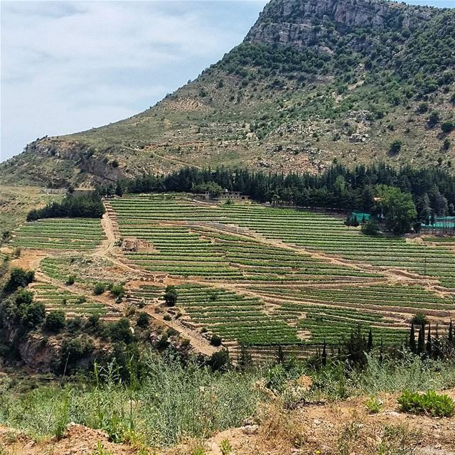 lebanon southlebanon aljanub jezzine hills landscape_captures ... (Jezzîne, Al Janub, Lebanon)