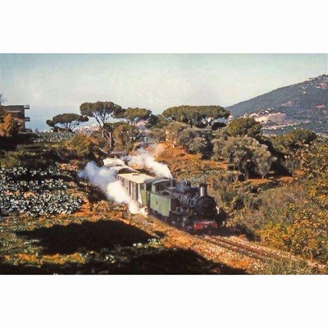توت توت عابيروت ، القطار في عاريا باتجاه بيروت عام ١٩٦١ ،