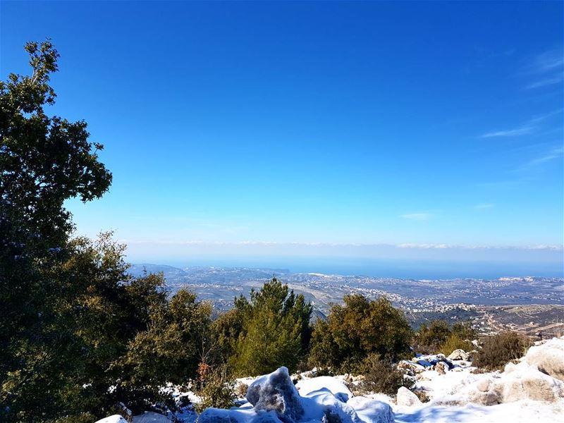 Hi blue sky. love nature lebanon snow bkuesky trees bcharre ... (Bcharré, Liban-Nord, Lebanon)