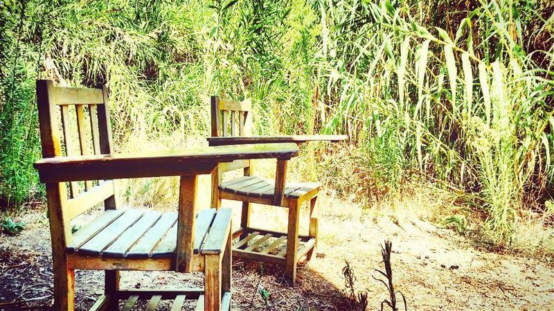 Nature is my... (Eco Village lebanon)