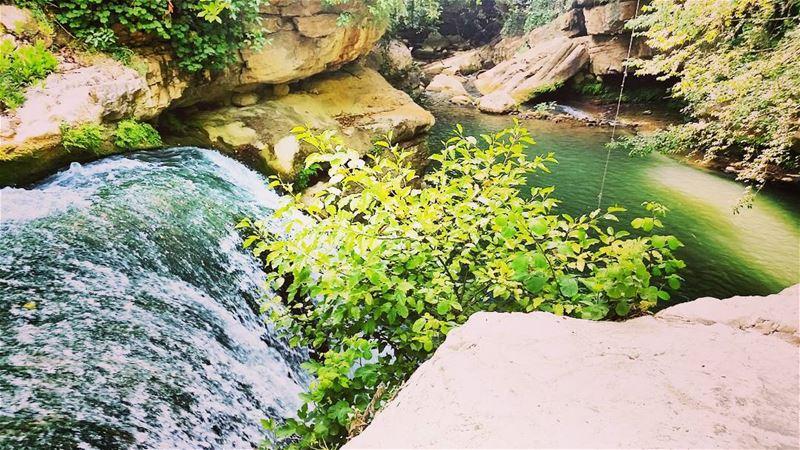 serjbel chouf lebanon summer waterfall love green nature tree ... (Serjbel)
