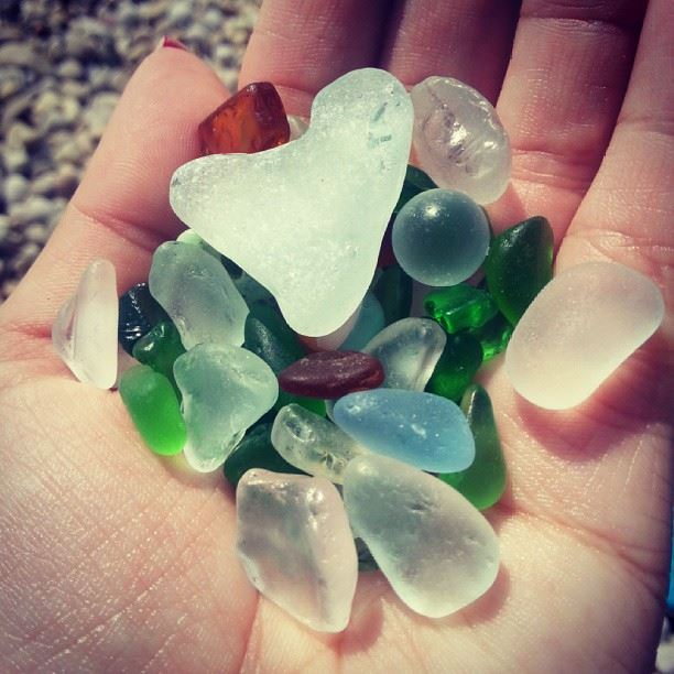 What the water gave me. beach sea florence nature gift fun summer ...