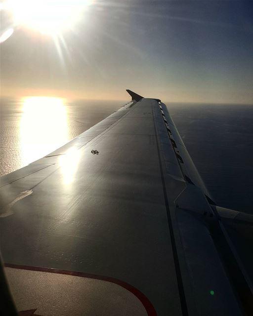 landing livelovelebanon home ...