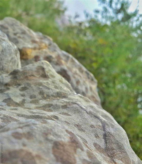 و تمطر حبيباتها على الصخور لتغسلها كما تغسل التوبة ذنوب الخاطئين 👌📷 🍃 🌳