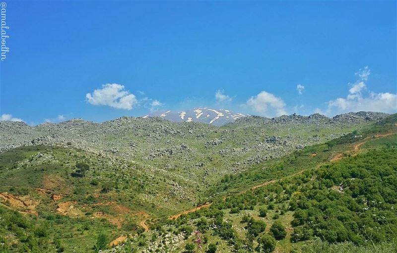 حين يجتمع الربيع مع بقايا الشتاء! 👌📷🍃 rashaya daylight naturelovers ... (Jabal El Sheikh)