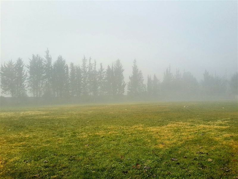 🌁 📷 🍃 morning sunrise morningviews morningview fog foggy ... (El Khiâra, Béqaa, Lebanon)