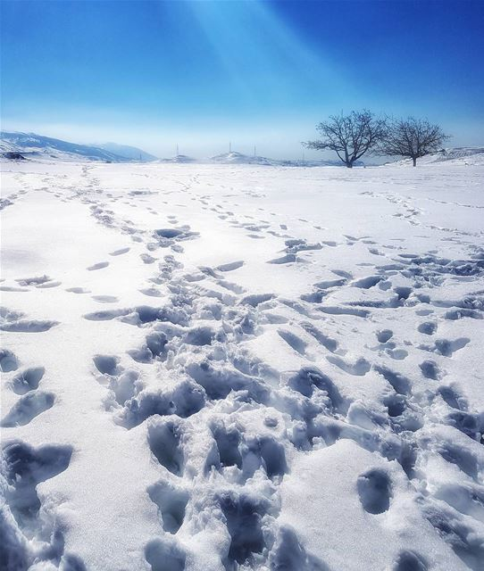 ❄☃⛷🏂 lebanon dahrelbaydar beautifuldestinations placetovisit ...