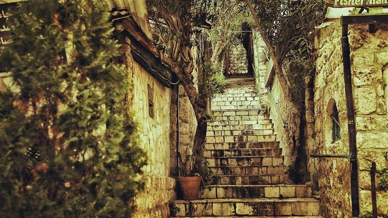"""It is not enough to stare up the steps, we must step up the stairs."" 