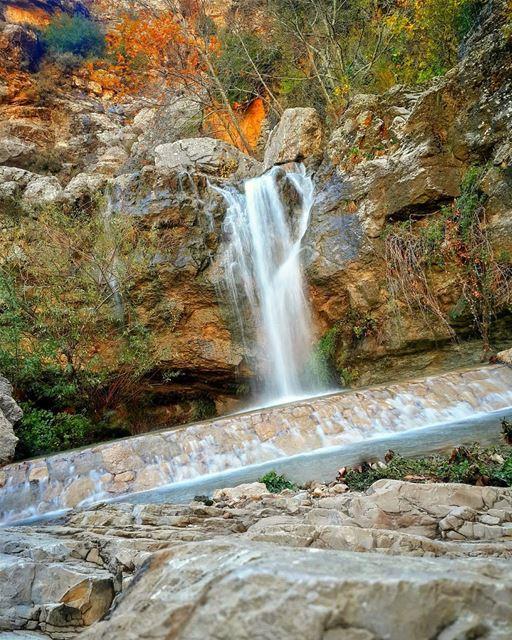الجمال مجرد طبقة خارجية، اما القبح فيكون متوغلا حتى العظام 👌📷 🍃 🌳... (Jezzîne, Al Janub, Lebanon)